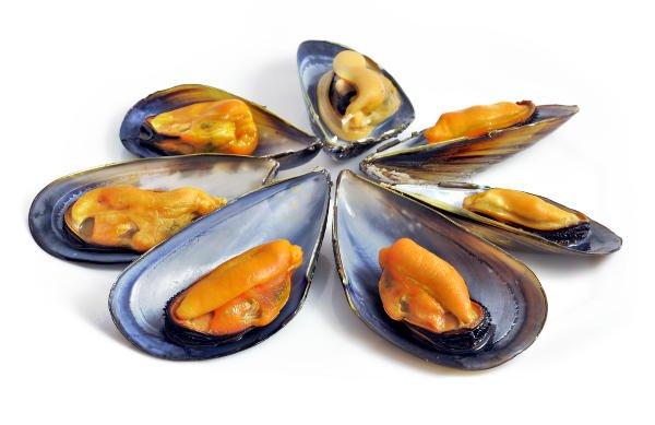 El marisco de temporada, como los mejillones, es bajo en calorías y alto en proteínas